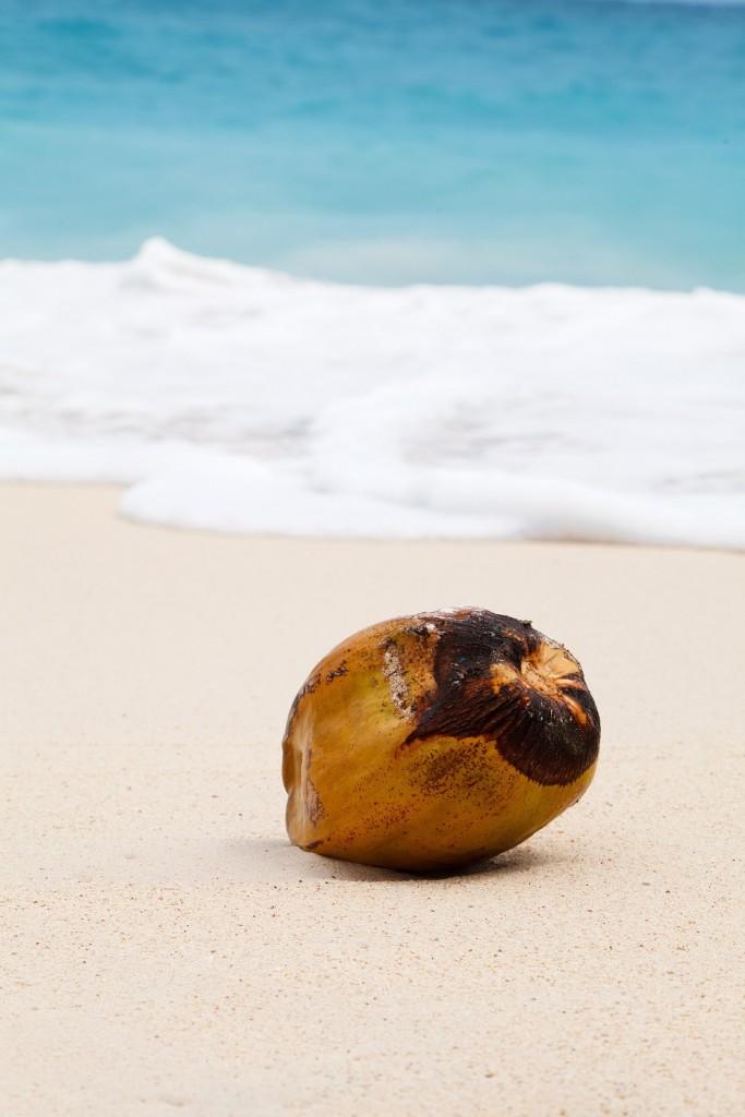 ココナッツオイルを最大限に生かす