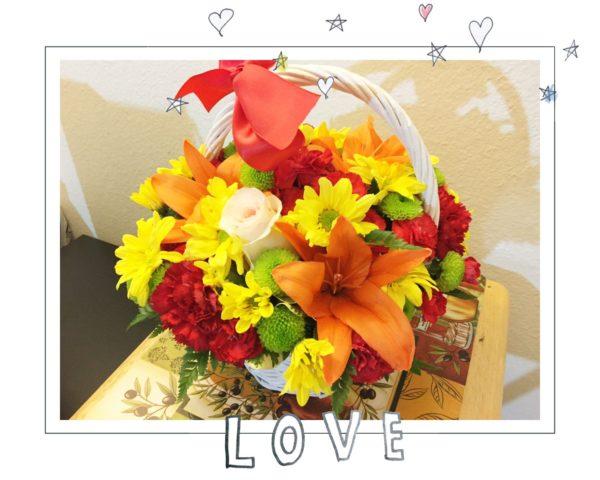 お花に励まされました🌸