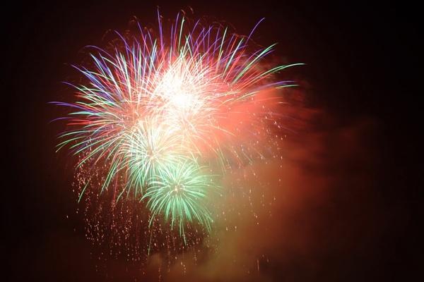 アメリカ【独立記念日の花火】に大興奮の2歳児